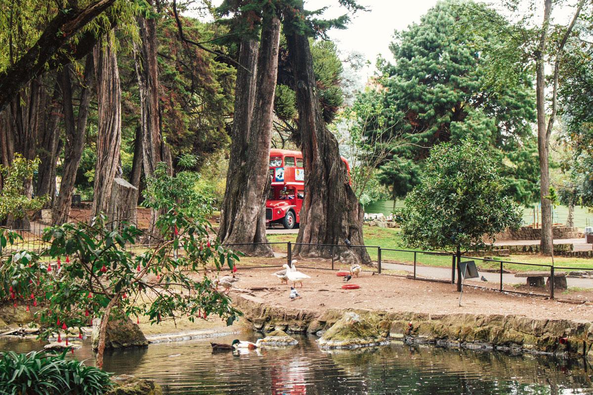 Parque del Chicó