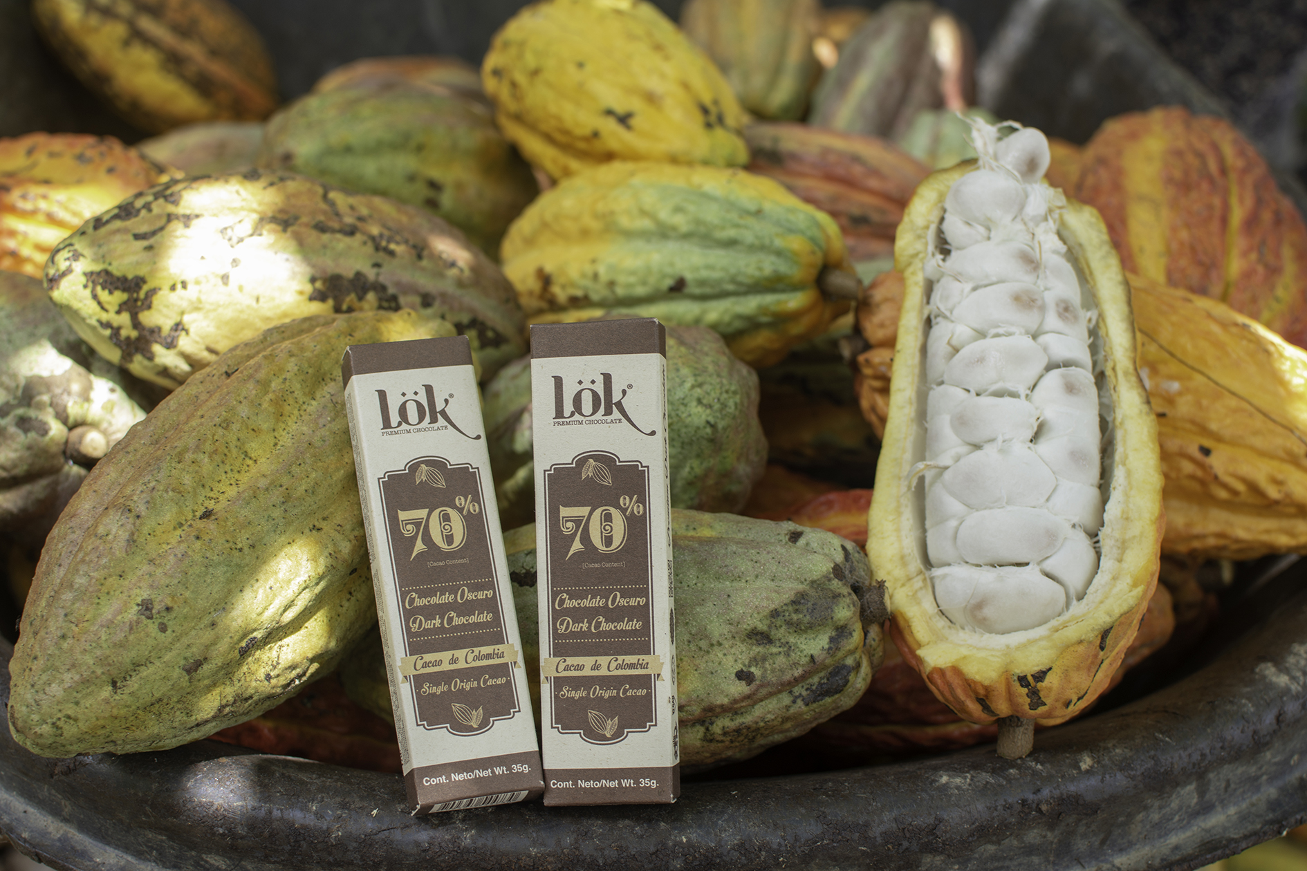 Lök, aromatic, quality cocoa